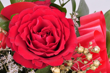 Big beautifulof red roses flower. Texture ped colors.  Valentines Day. Roses flower background. Roses flower texture. Stok Fotoğraf