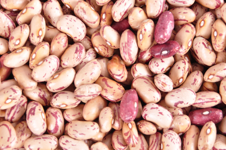 Colored haricot beans closeup on a background, top view, beans background.. Banco de Imagens