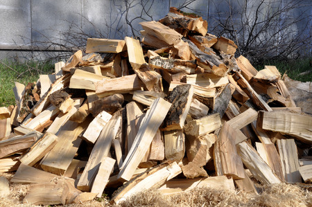 Pile of wood logs for interesting backgrounds and textures. For creative ideas Banco de Imagens