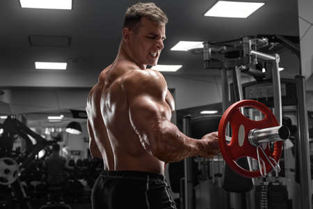 Muscular man working out in gym doing exercise for biceps. Strong male  torso Standard-Bild