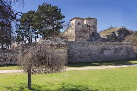 Iconic ancient fortress called Momcilov grad, in Pirot, Serbia and foreground dwarf tree photographed during sunny day and crystal blue sky
