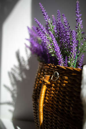 Sunlight On Blooming Lavender On White Wall With Shadow, Copy Space