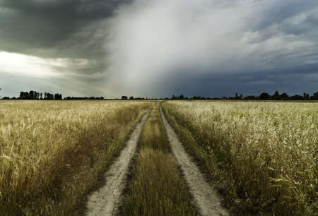 Road to a storm photo