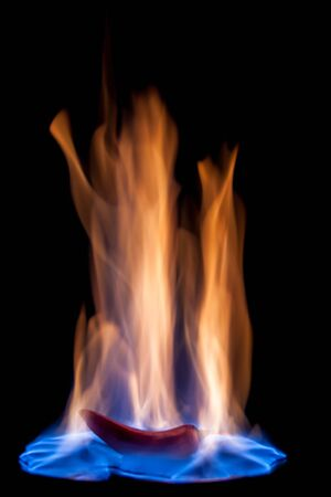 blue flames: Hot pepper burning in blue flames Stock Photo