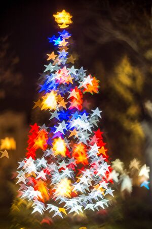 star shaped: Defocused Christmas tree with star shaped bokeh lights