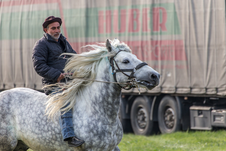 pageant: KALUGEROVO, BULGARIA - MARCH 19, 2016 - St. Theodores Day or Horse day celebrations in Kalugerovo village, Bulgaria. The event includes horse beauty pageant and horse races called Kushii Editorial