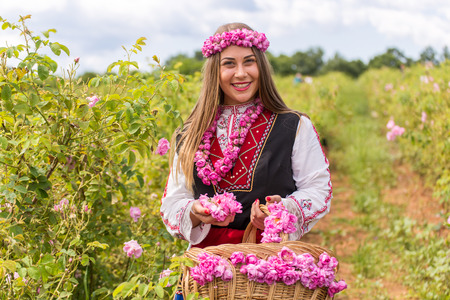 Bulgarian girl dressed in traditional dress picking roses during the Annual Rose Festival in Kazanlak, Bulgaria