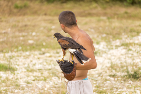 ASENVOGRAD, BULGARIA - JUNE 25, 2016 - Medieval fair in Asenovgrad recreating the life of Bulgarians during the Middle ages. Young man training a falcon to various commands.