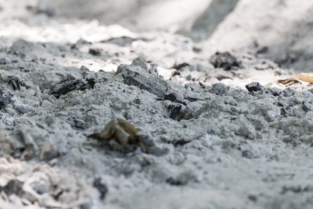 Close-up of a big pile of burnt charcoal ash Stock Photo