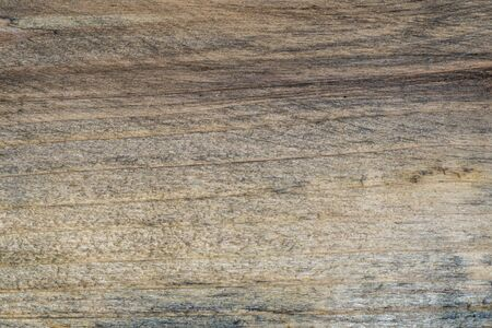 Extreme macro shot of a wooden plank with detailed texture Stock Photo