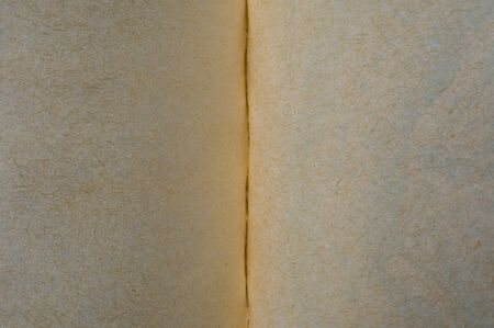 Extreme macro of old book pages with visible paper details