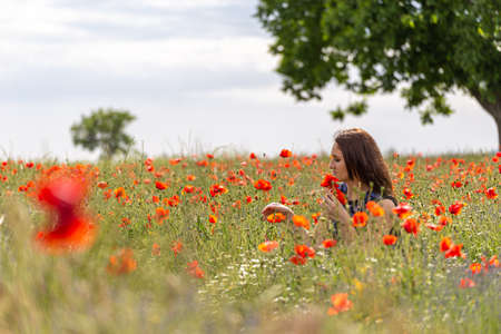 A young woman in a blue dress in a poppy flower field with beautiful clouds in the background Reklamní fotografie