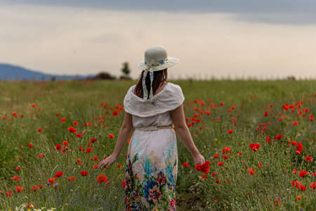 Young girl dressed in a white dress and a hat walking around a red poppy field Stock Photo