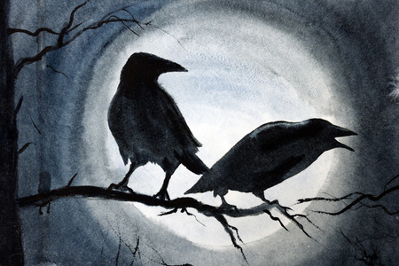 two black crows on a tree branch