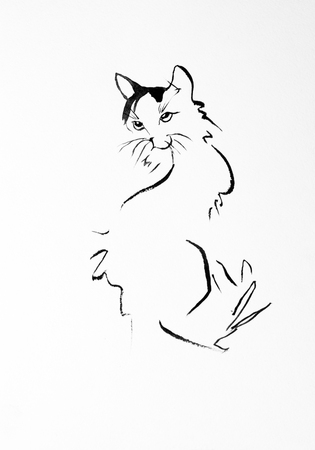 cat sketch drawn with ink photo