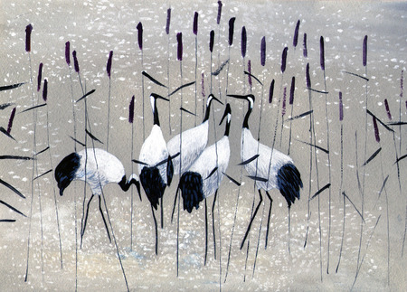 animal mating: family of cranes in the reeds