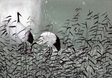 mating: beautiful birds crane in the reeds Stock Photo