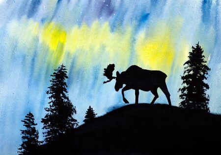 northern lights: moose and beautiful northern lights
