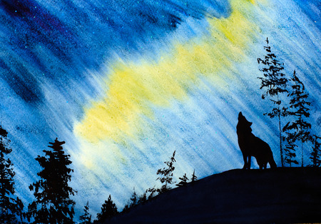 beautiful northern lights and the Wolf photo