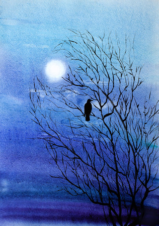 a lone crow in the tree and light of the moon