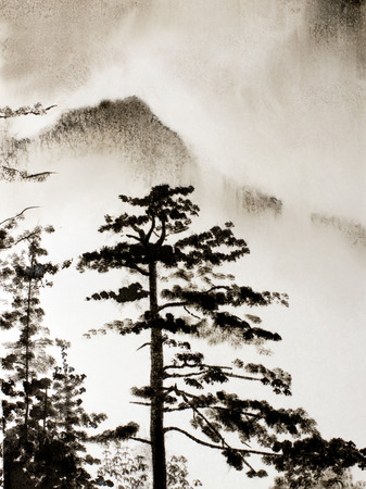 Chinese Mountain fog and pines photo