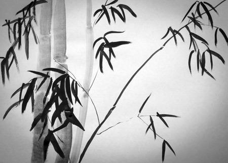 흰색 배경에 대나무 나무