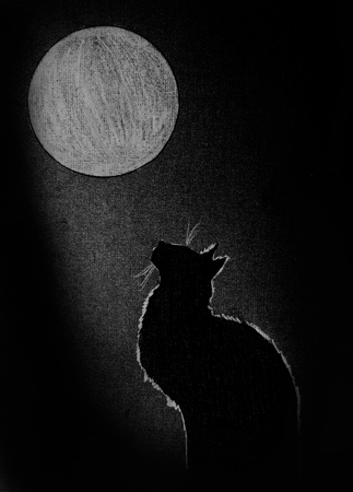 nightly: a black cat and a big round moon