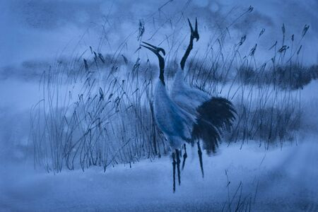 winter dance: dance of the cranes in the reeds in the winter Stock Photo
