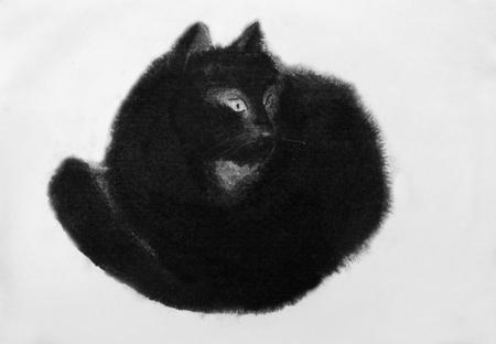 kitty: black cat drawn in black ink Stock Photo