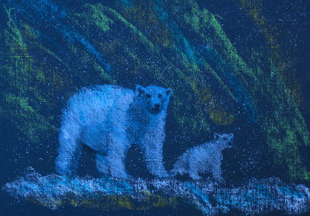 animal den: polar bears and northern lights