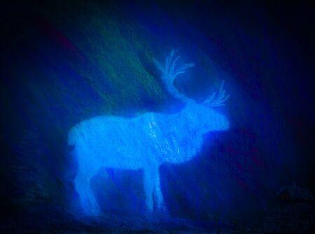 snowscape: White Deer in the dark