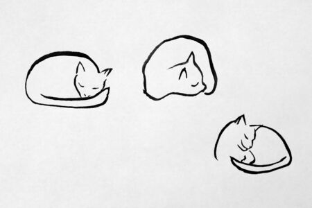 curledup: ink drawing of sleeping cat Stock Photo