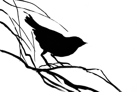 silhouette of the small bird on branch Stock Photo