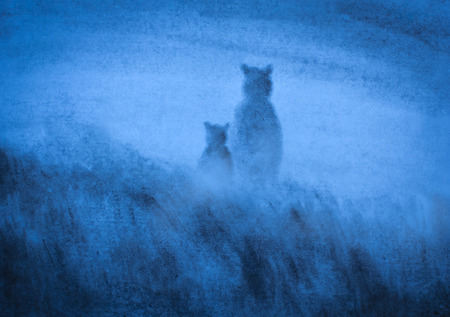 kodiak: Bears in the blue haze
