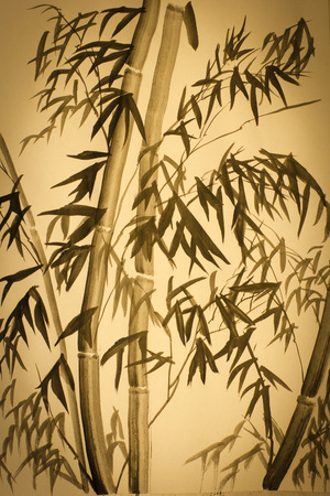 bamboo forest: high bamboo forest drawn in ink