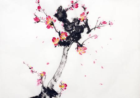 china watercolor paint: branch of cherry blossoms on a white background