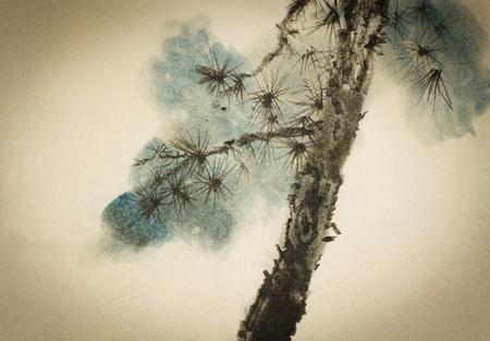 agujas y ramas de pino tronco