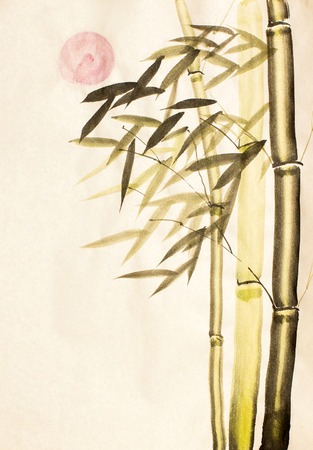 red sun: Green bamboo tree and red sun