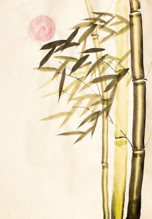 green bamboo: Green bamboo tree and red sun