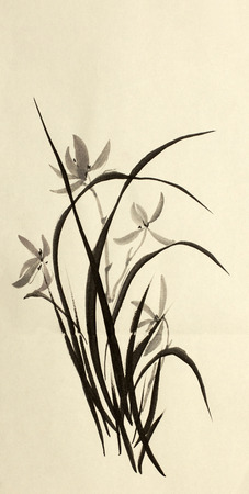 ink drawing: ink drawing of wild orchids