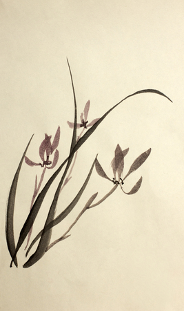 availability: ink drawing of wild orchids