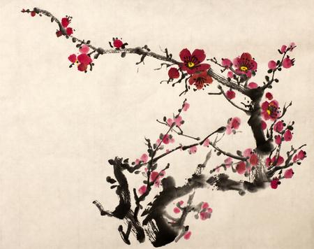 梅の美しい花をつけた枝 写真素材