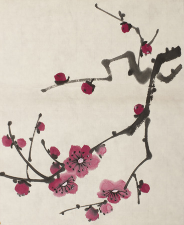 bright blossoming branch of plum