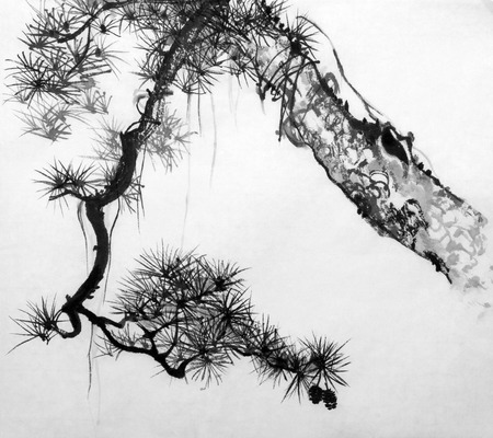 Drawing of a pine in Japanese style sumi-e