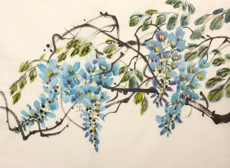 Tender flowering wisteria painted in Chinese style 版權商用圖片