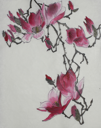 Bright branch of blossoming magnolia painted in Chinese style Stock Photo