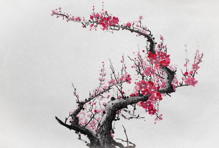 branche de prune fleurie sur un fond clair