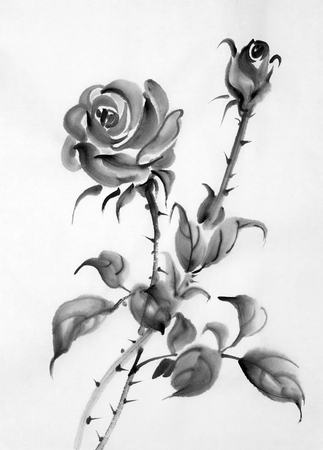 monochrome drawing of roses on a white background