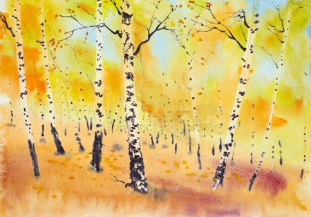 bright golden autumn in a birch grove