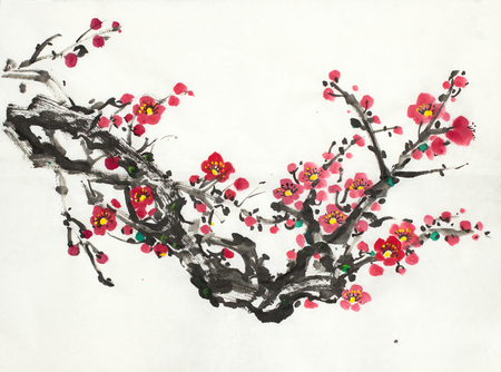 branch of a blooming wild plum